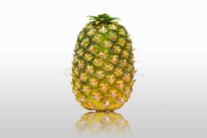 Download Pineapple stock image. Image of herb, green, shadow, fruit - 29027637