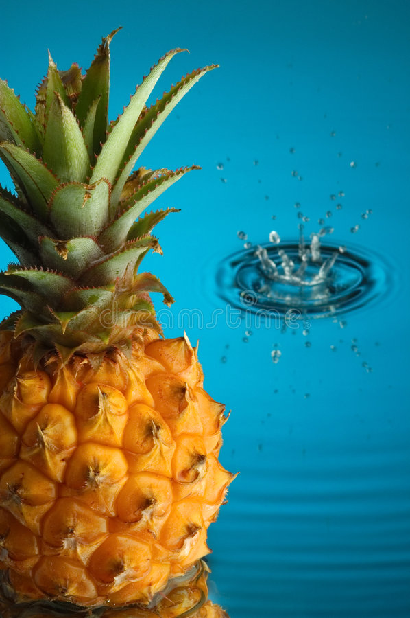 Free Pineapple 3 Royalty Free Stock Photos - 1914898