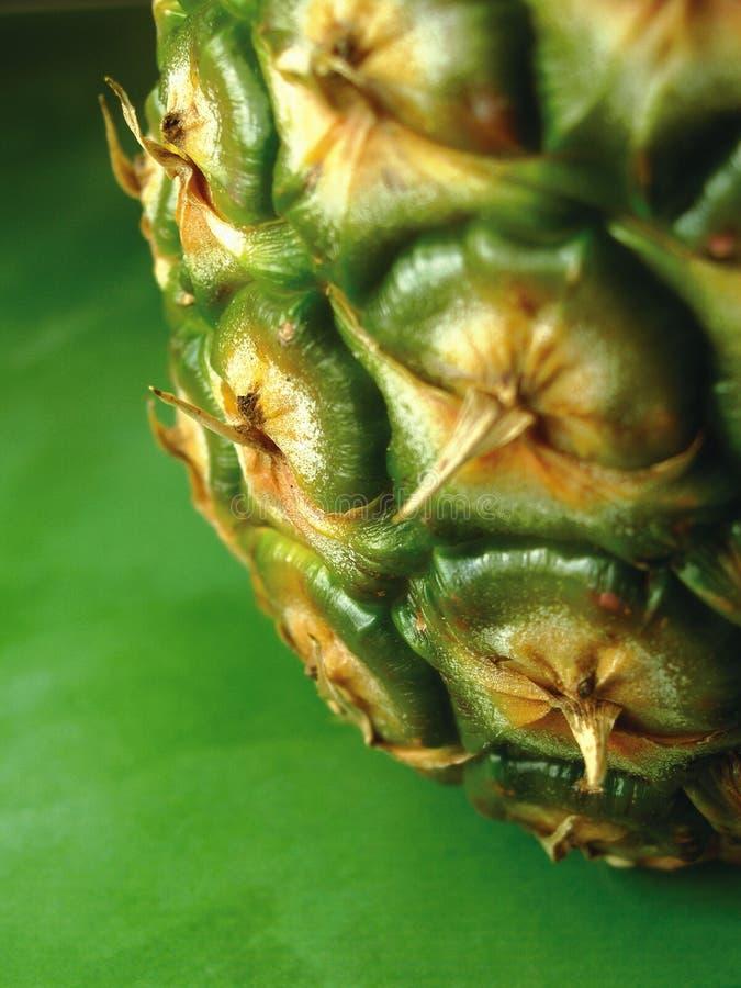 Pineapple 3 stock photo