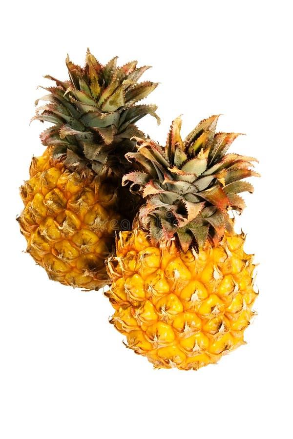 Pineapple (3) stock photography