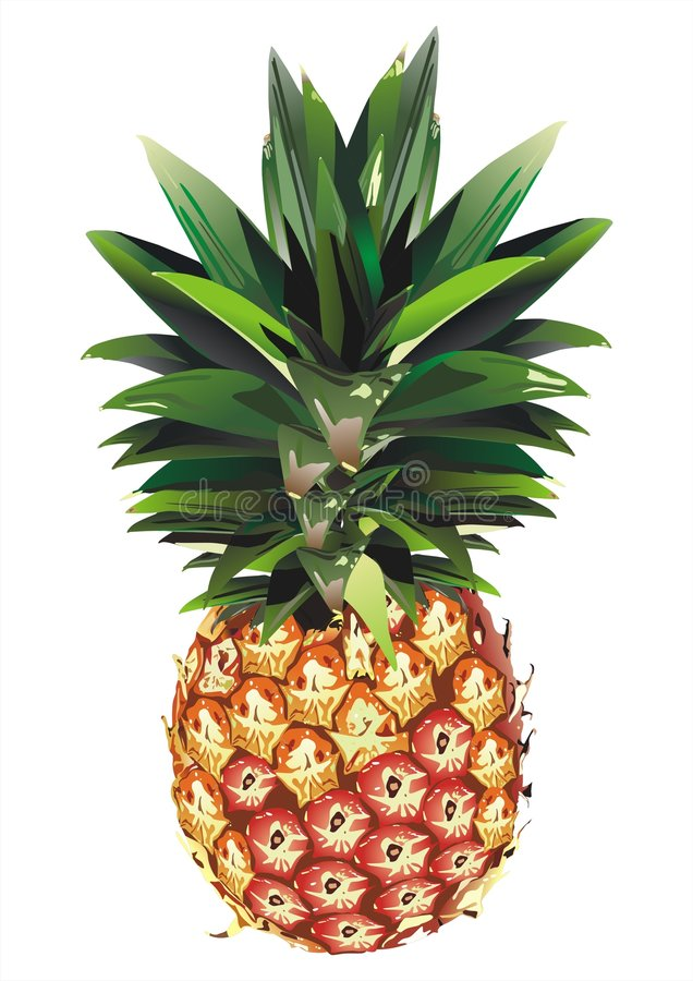 Free Pineapple Royalty Free Stock Photography - 3871697