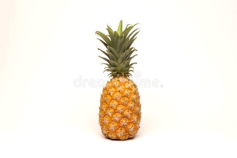 Download Pineapple stock image. Image of vitamin, yellow, fiber - 9216753