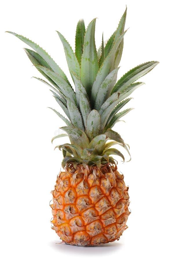 Pineapple ananas fruit royalty free stock photos