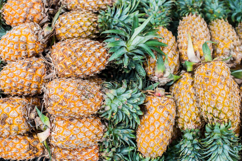 Pineapple background tropical fruit stock photography