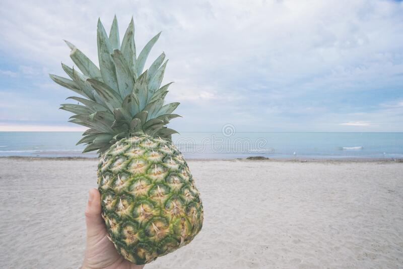 Pineapple on beach royalty free stock photos