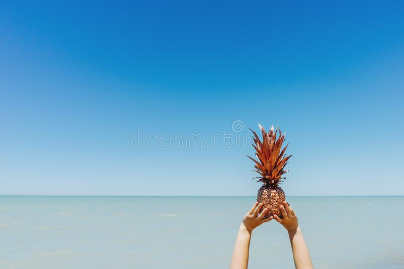 Pineapple At Beach Free Public Domain Cc0 Image
