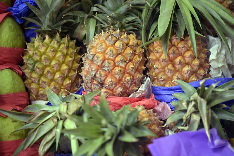Pineapple bunch on market stall. Close-up of pineapple bunch on market stall royalty free stock images