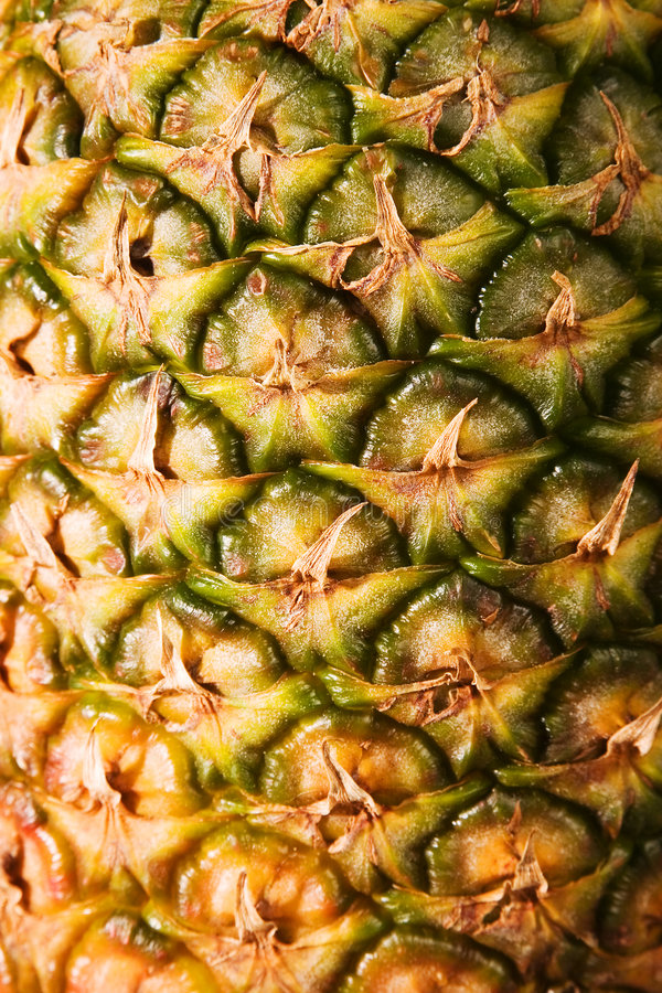 Pineapple Close Up 3 stock images