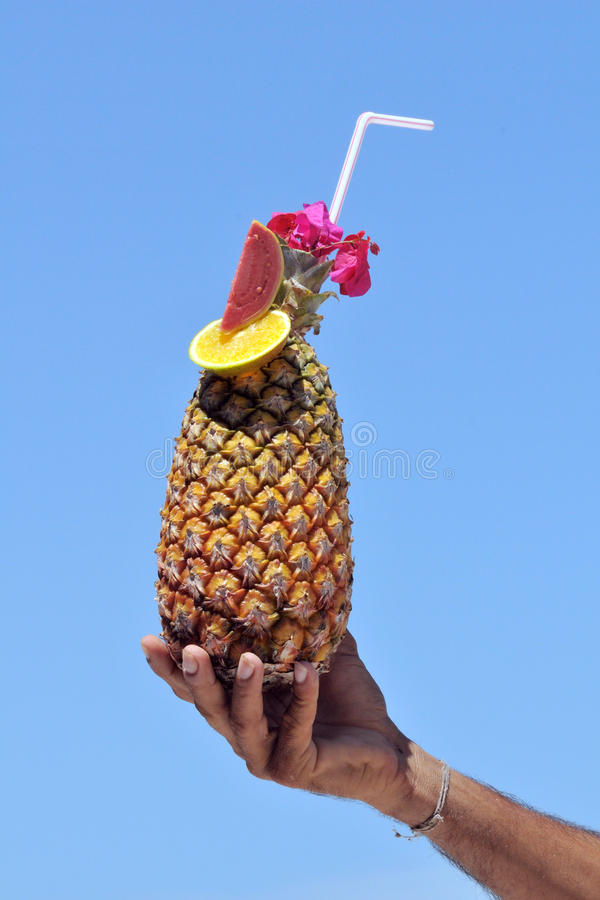 Download Pineapple cocktail stock image. Image of cocktail, thirst - 12441431