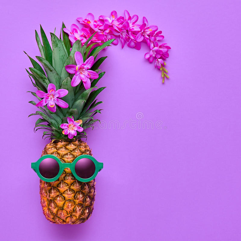 Pineapple Fashion Hipster. Tropical Summer Mood stock images