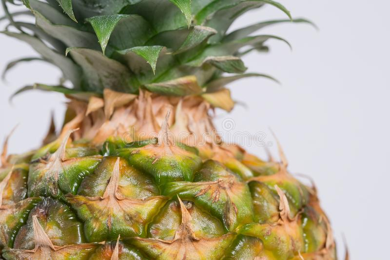 Pineapple Fruit Free Public Domain Cc0 Image