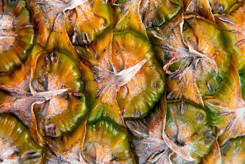 Pineapple Fruit Background Stock Photography