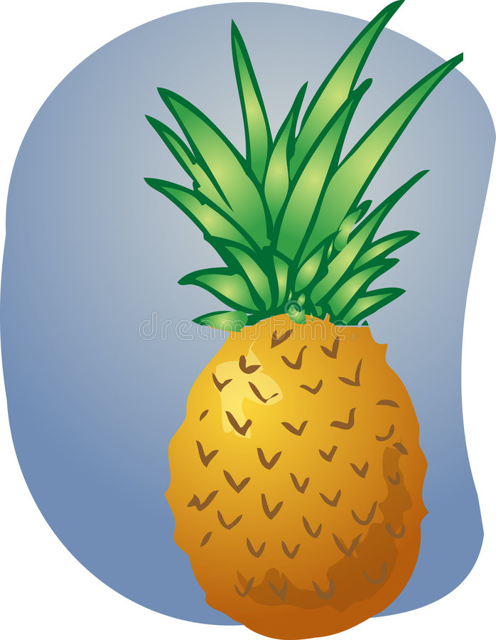 Pineapple fruit illustration stock illustration