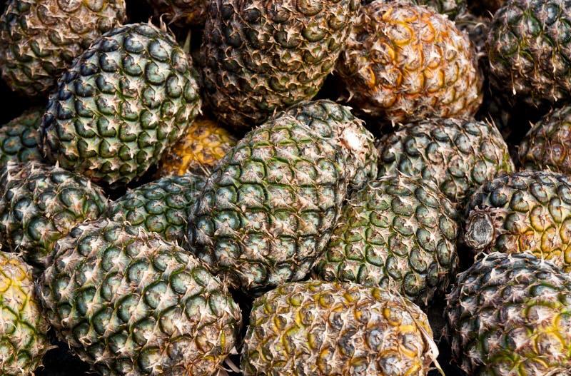 Pineapple at fruit market royalty free stock image