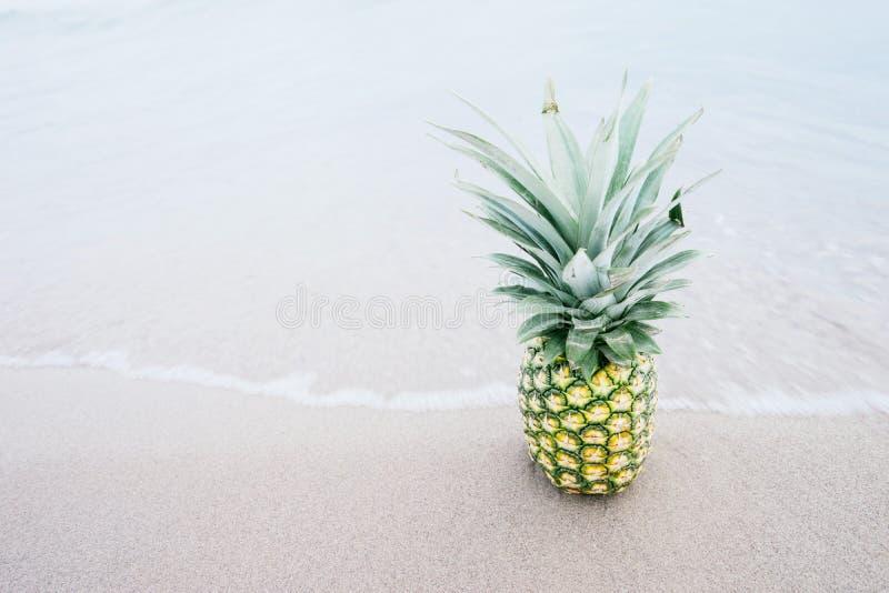 Pineapple Fruit On Shore Free Public Domain Cc0 Image