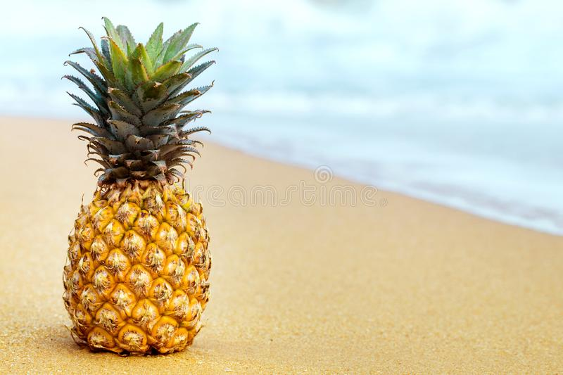 Pineapple on golden sand stock photo