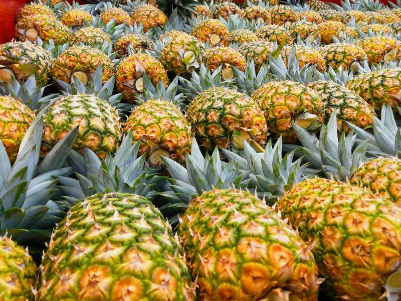 Pineapple. Golden tropical fruit royalty free stock photography