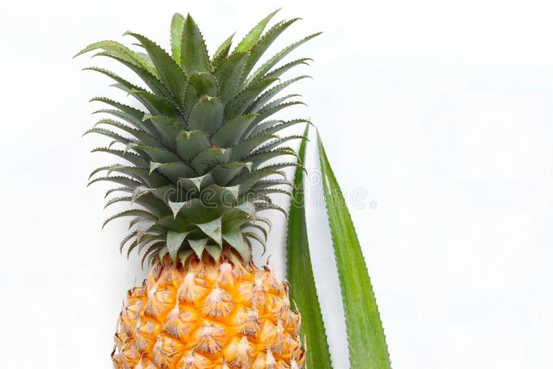 Pineapple on white background royalty free stock photography
