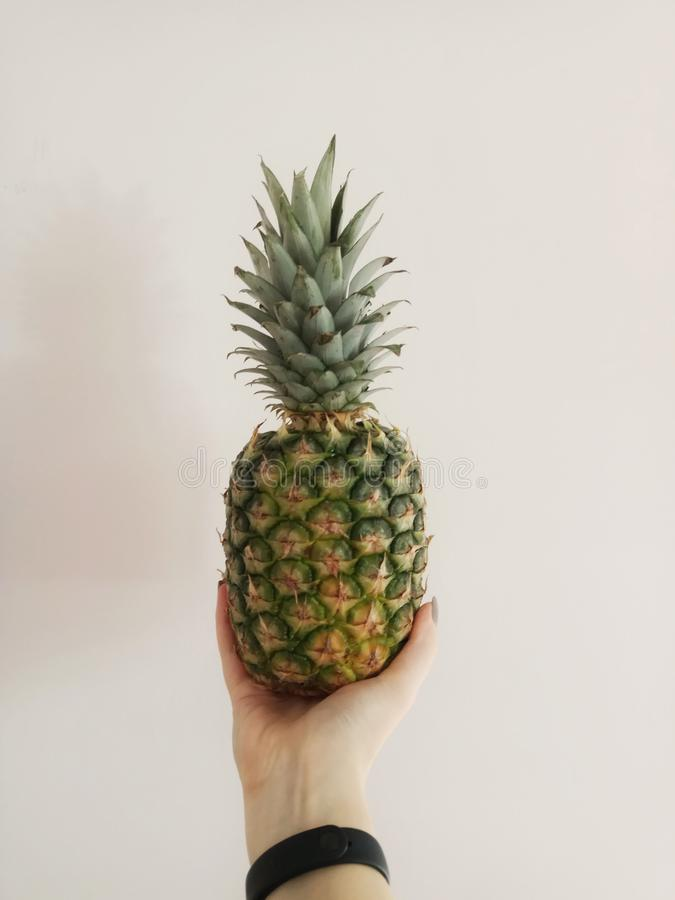 pineapple in hand stock photo