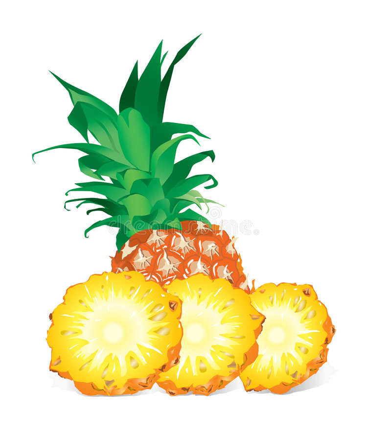 Pineapple (illustration) stock illustration
