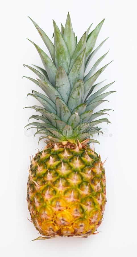 Download Pineapple isolated stock photo. Image of organic, fresh - 19783668