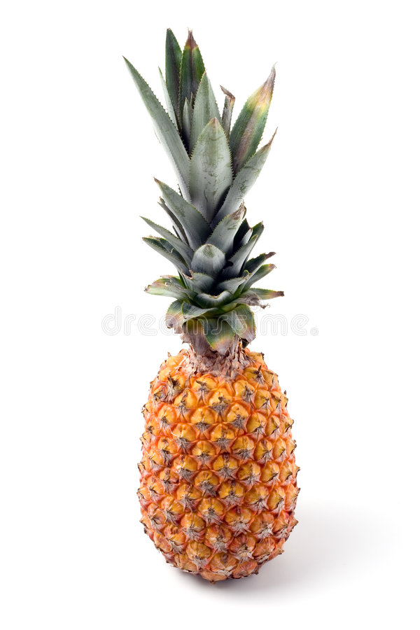 Download Pineapple isolated stock image. Image of fruit, healthful - 868019