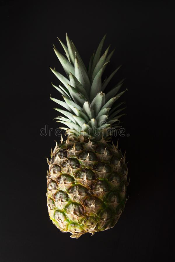 Pineapple isolated on black. Fresh exotic, tropical fruit with copy space. Dark photo. Summer fruit royalty free stock photography