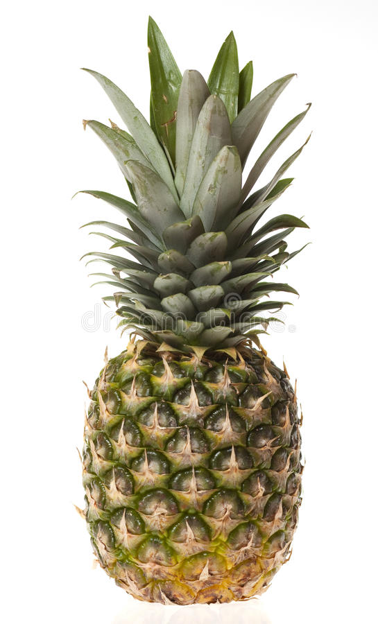 Download Pineapple Isolated On White Stock Image - Image: 23694913