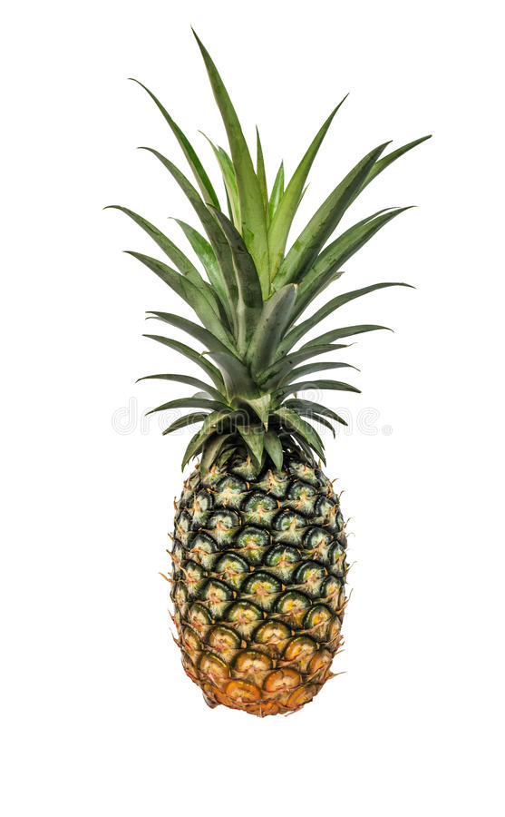 Pineapple isolated white background with clippingpath. Stock photo royalty free stock photo
