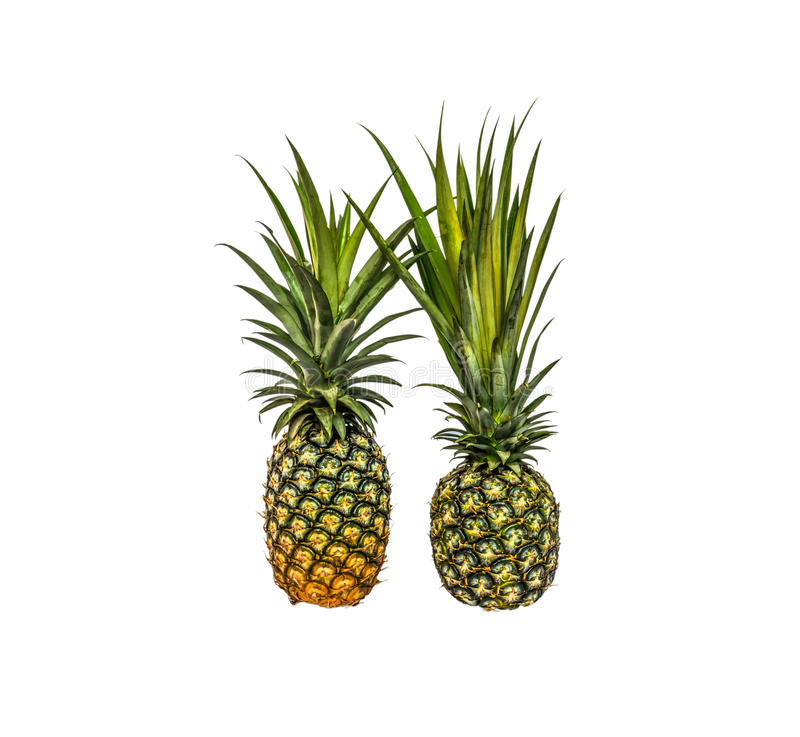 Pineapple isolated white background with clippingpath. Stock photo stock images