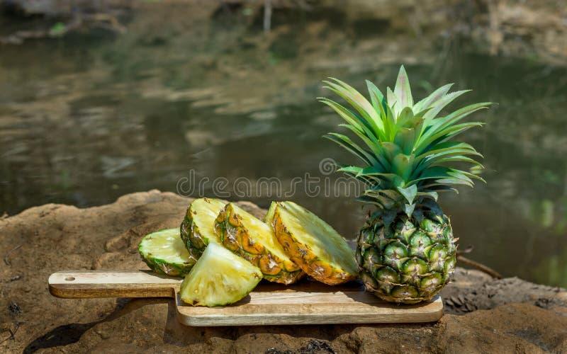 Pineapple juice waterfall,copy space royalty free stock photos