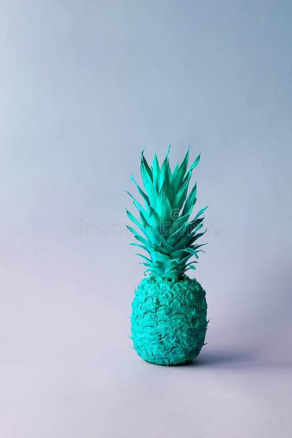 Pineapple in neon light stock images
