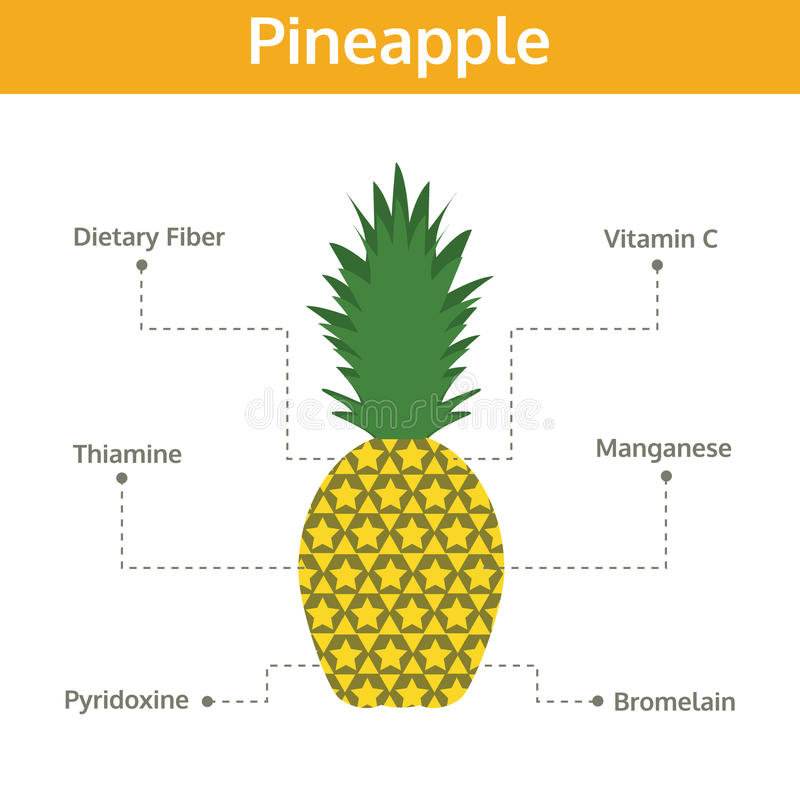 Free Pineapple Nutrient Of Facts And Health Benefits, Info Graphic Stock Images - 80331034