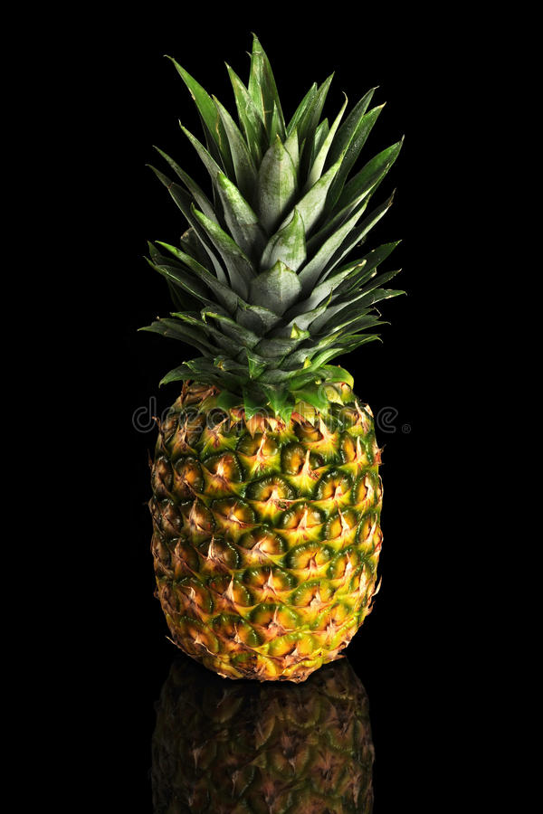 S And B Filters >> Pineapple Over Black Background Stock Photo - Image of ...