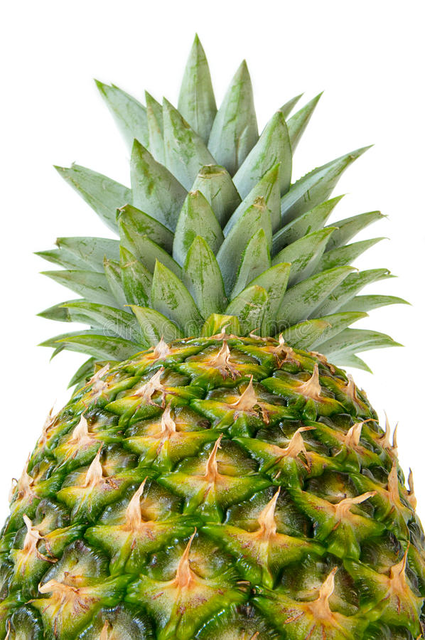 Download Pineapple in perspective stock image. Image of yellow - 12154473