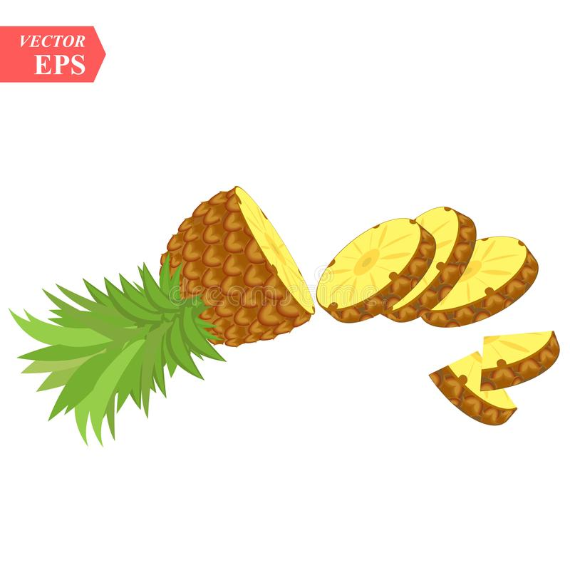 Pineapple realistic fruit with slice. Vector illustration. ananas ripe tropical exotic Juicy fresh food, vitamin healthy. Dieting. Ananas juice summer vacation stock illustration