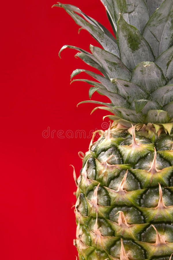 Pineapple on red background stock photos