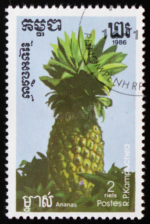 Pineapple a series of images `Exotic fruits` circa 1986. MOSCOW, RUSSIA - FEBRUARY 19, 2017: A stamp printed in Kampuchea shows Pineapple a series of images ` stock photo