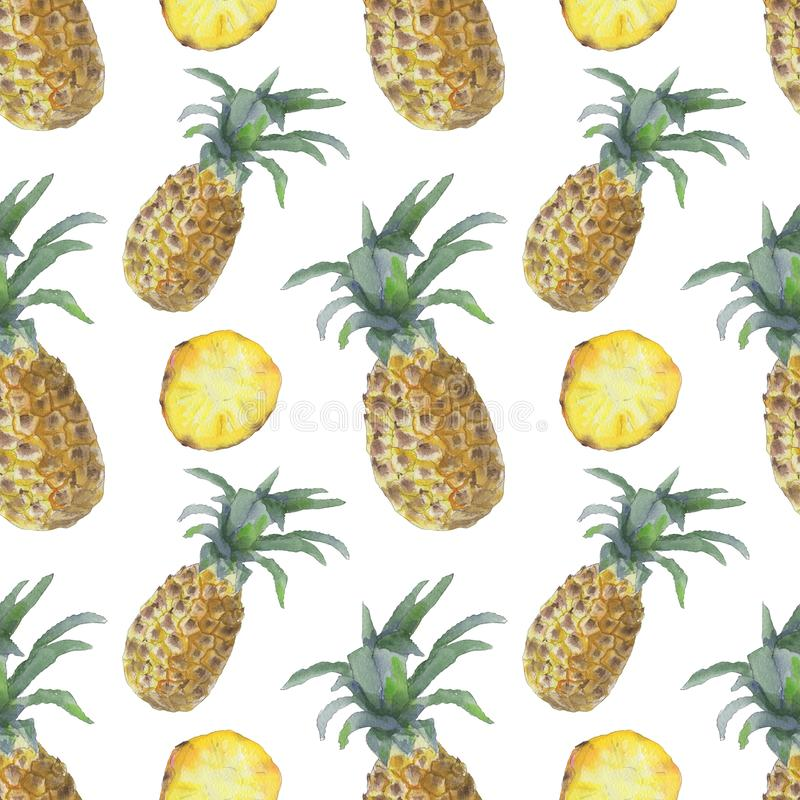 Pineapple and slices pattern vector illustration