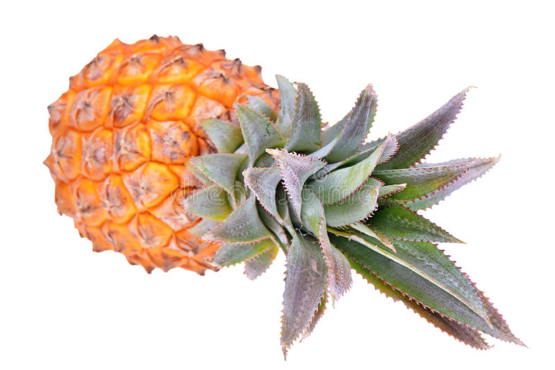 Pineapple tropical fruit or ananas isolated stock image
