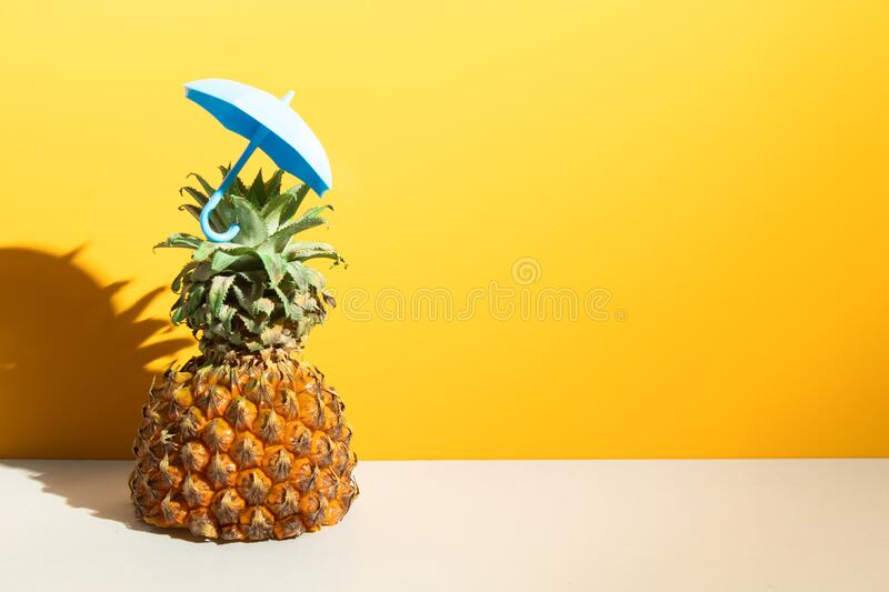 Pineapple tropical fruit with blue umbrella toy, hot summer season vacation holiday. Pineapple  tropical fruit with blue umbrella toy, hot summer season vacation stock image