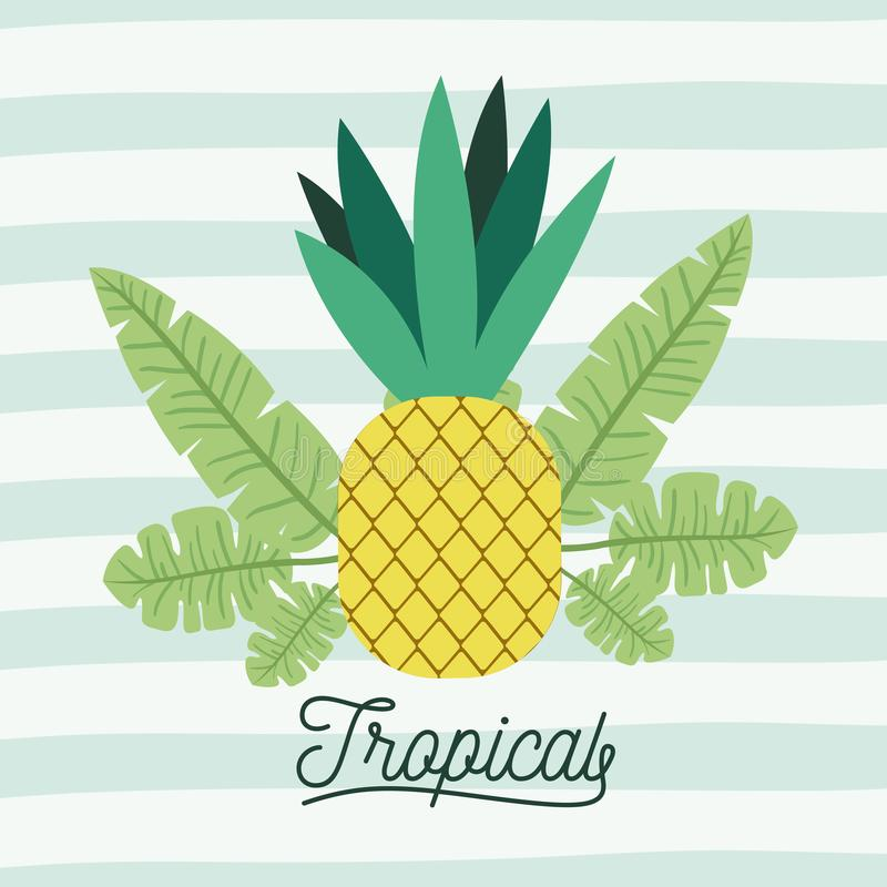 Pineapple tropical fruit with leaves on decorative lines color background stock illustration