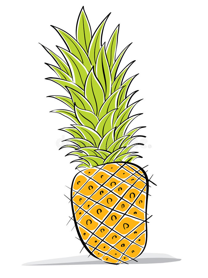 Download Pineapple vector drawing. stock vector. Image of icons - 24940561