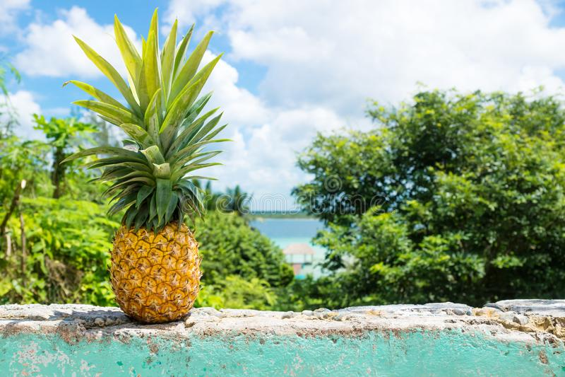 Pineapple on a wall with view to Bacalar lake, Bacalar, Mexico. Pineapple on a wall with view to Bacalar lake and dock, Bacalar, Mexico royalty free stock photo