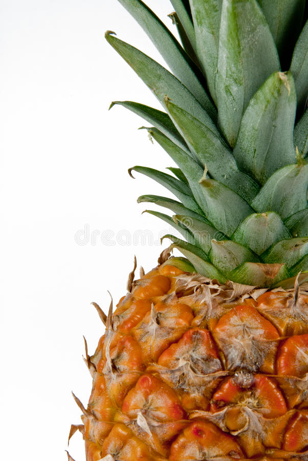 Pineapple on a white background royalty free stock photo