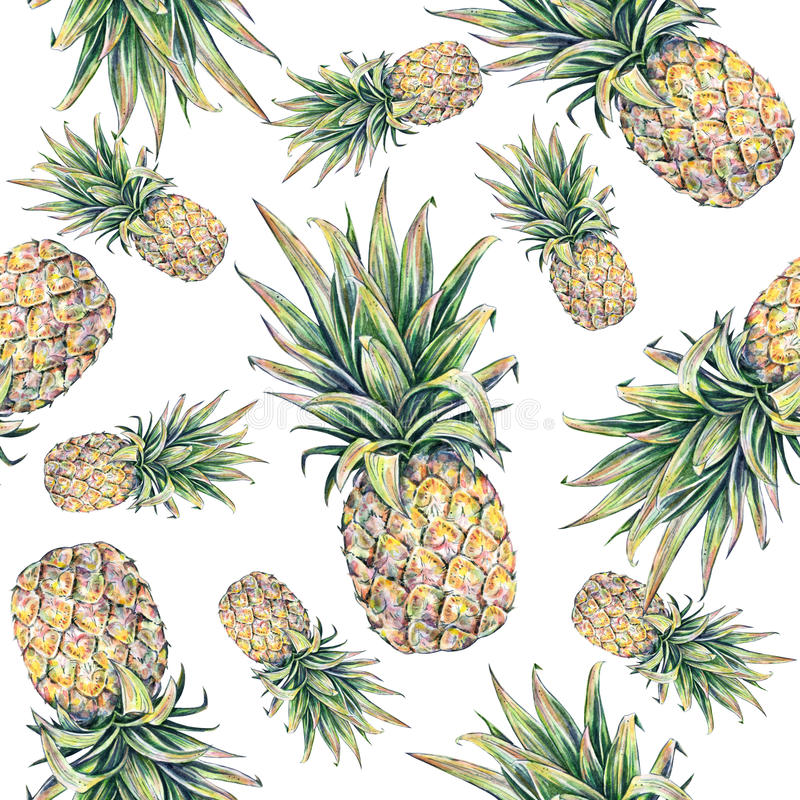 Pineapple on a white background. Watercolor colourful illustration. Tropical fruit. Seamless pattern.