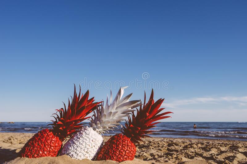 Pineapples on beach stock images