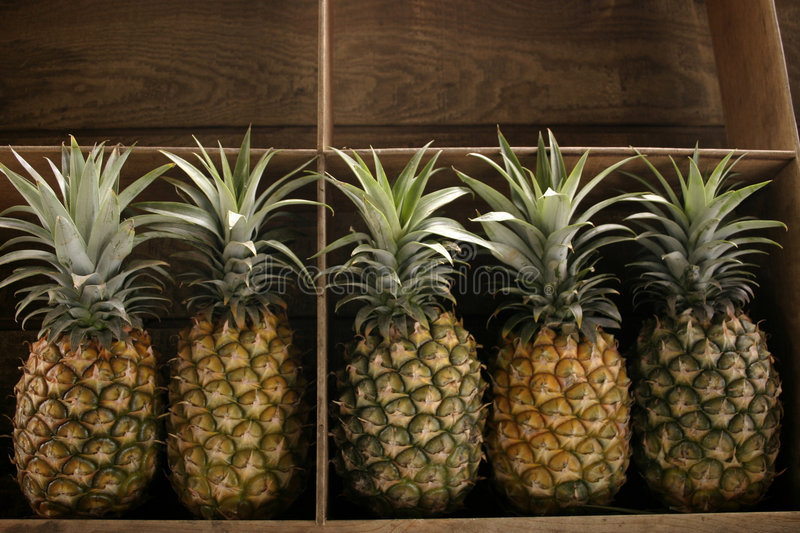 Pineapples for sale royalty free stock photos