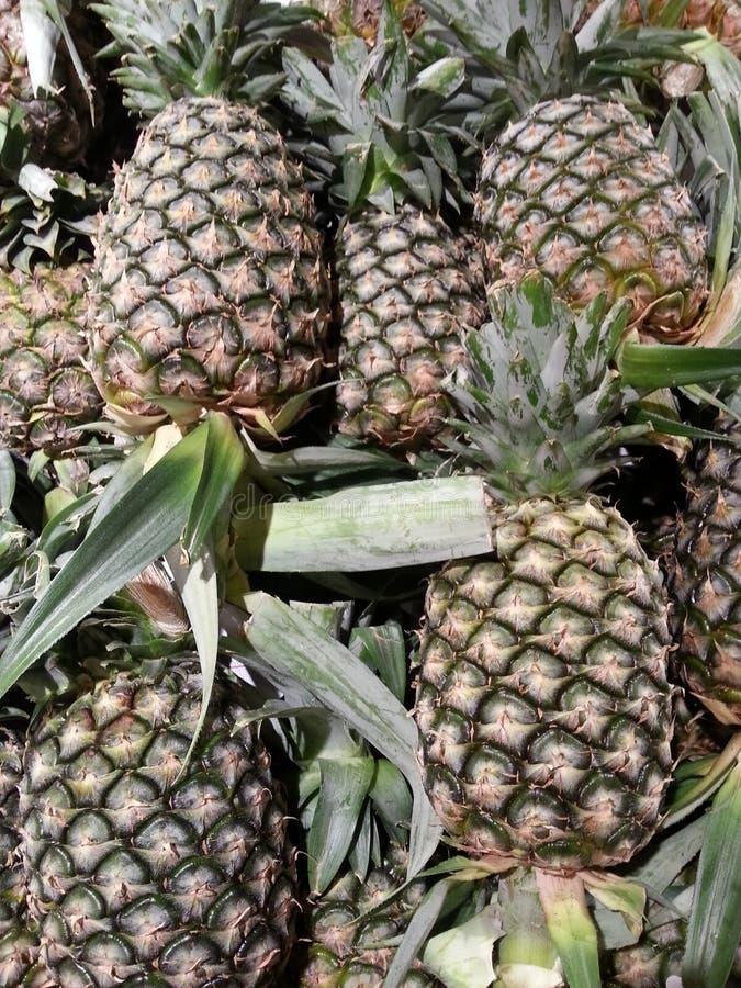 Pineapples on shelf stock image
