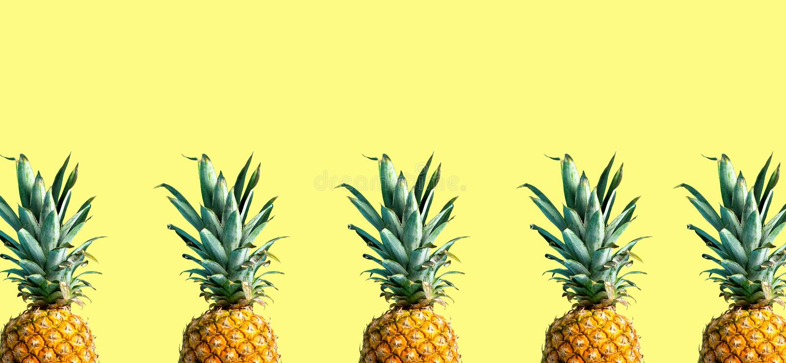 Pineapples on a solid color background. Many pineapples on a solid color background stock image